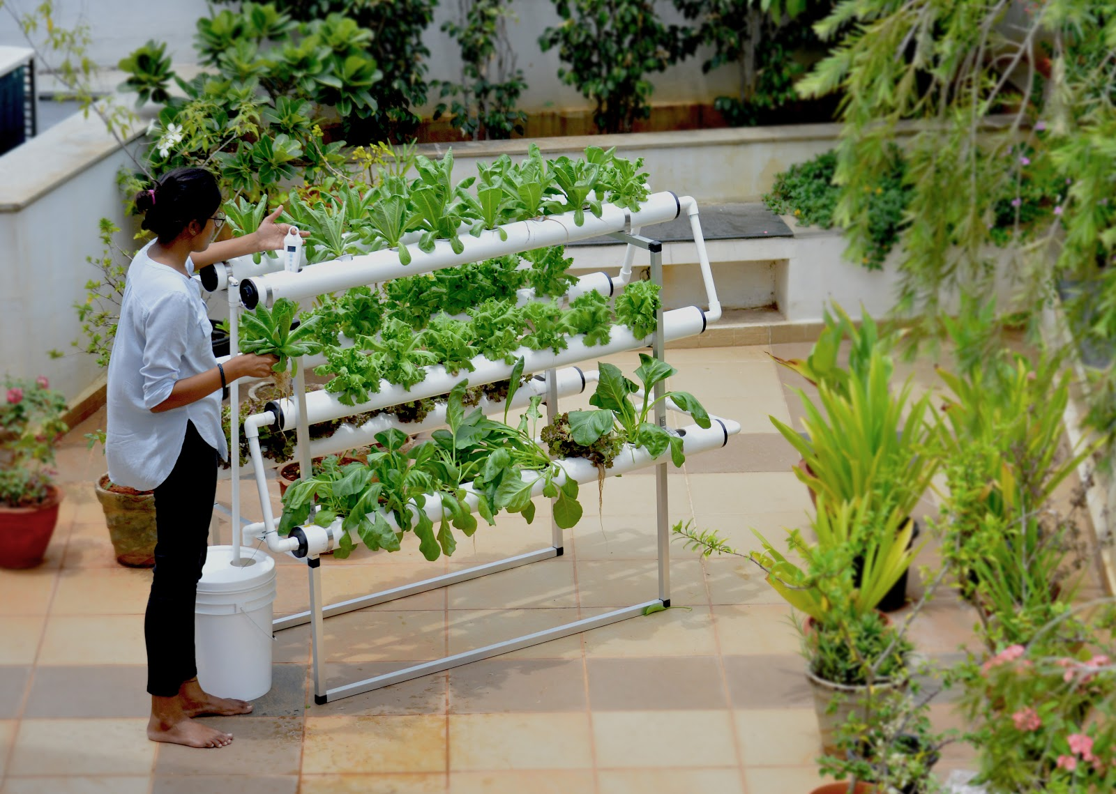 What Hydroponic Supplies Do I Need To Start Hydroponic Gardening?